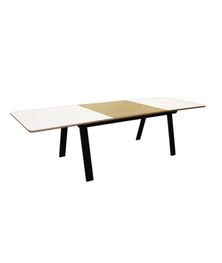 TABLE DE REPAS RECTANGULAIRE 1 ALLONGE