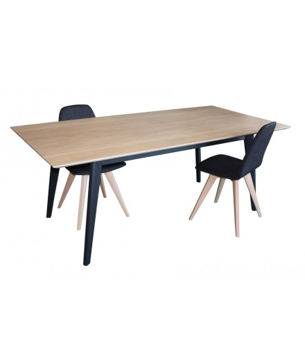 Table de repas collection 13